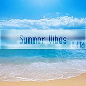 Summer Vibes Vol, 12 by Various Artists