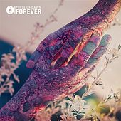 Forever by Pulse of Dawn