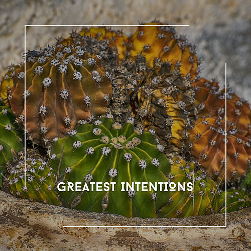 Greatest Intentions - Ambient Chill Out Zone von Relaxing Chill Out Music