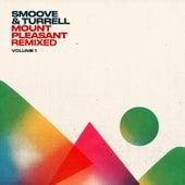 Mount Pleasant Remixed, Vol. 1 von Smoove & Turrell