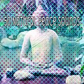 50 Natural Peace Sounds von Lullabies for Deep Meditation