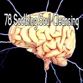 78 Soothing Soul Cleansing von Massage Therapy Music