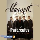 Partícules de Blaumut
