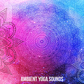 Ambient Yoga Sounds by Asian Traditional Music