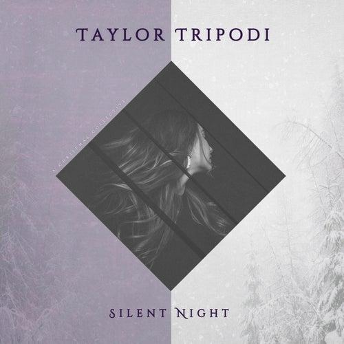 Silent Night by Taylor Tripodi