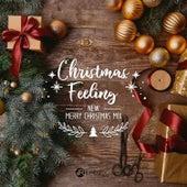 Christmas Feeling: New Merry Christmas Mix, Beautiful Christmas Session de Various Artists