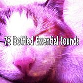 78 Bottled Essential Sounds von Best Relaxing SPA Music