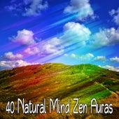 40 Natural Mind Zen Auras von Entspannungsmusik