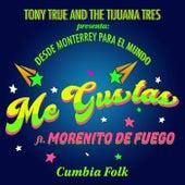 Me Gustas (Feat. Morenito de Fuego) (Remix) de Tony True and the Tijuana Tres
