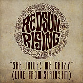She Drives Me Crazy (Live From SiriusXM) by Red Sun Rising