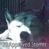20 Approved Storms de Thunderstorm Sleep
