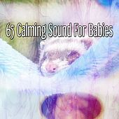 65 Calming Sound For Babies de White Noise Babies