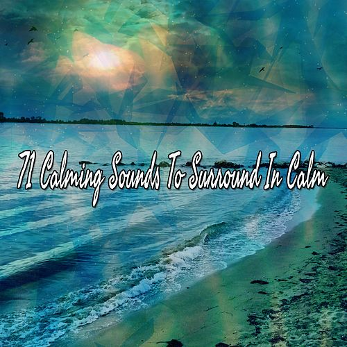 71 Calming Sounds To Surround In Calm de Yoga Music