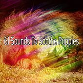 61 Sounds To Soothe Puppies de Ocean Sounds Collection (1)
