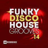 Funky Disco House Grooves, Vol. 14 - EP fra Various Artists