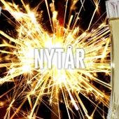 Nytår 2019 - Nytårsfesten - Musikken til  Nytårsaften by Various Artists