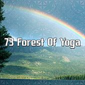 73 Forest Of Yoga by Yoga Workout Music (1)