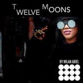 Twelve Moons de Various Artists