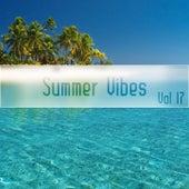 Summer Vibes Vol, 17 de Various Artists