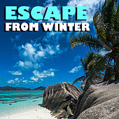 Escape From Winter by Various Artists