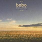 Horizonte de Bobo