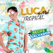 Luca de Melo Tropical de Luca de Melo