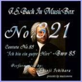 Cantata No. 85, 'Ich bin ein guter Hirt'', BWV 85 de Shinji Ishihara