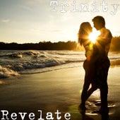 Revelate by Trinity