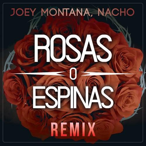 Rosas O Espinas (Remix) de Joey Montana