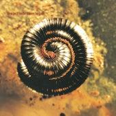 Closer To God de Nine Inch Nails