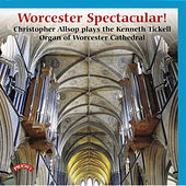Worcester Spectacular by Christopher Allsop
