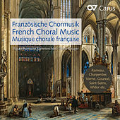 French Choral Music de Figure Humaine Kammerchor