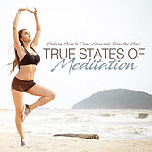 True States of Meditation Healing Music to Clear, Focus and Relax the Mind by Various Artists