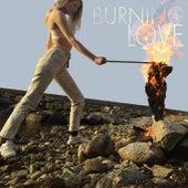 Burning Love de Sandra Kolstad