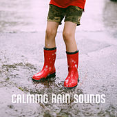 Calming Rain Sounds by Various Artists