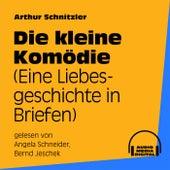 Die kleine Komödie (Eine Liebesgeschichte in Briefen) von Arthur Schnitzler
