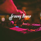 Groovy House by Various Artists
