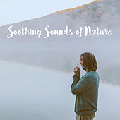 Soothing Sounds of Nature by Various Artists