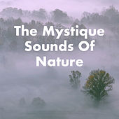 The Mystique Sounds Of Nature de Various Artists