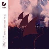 Heard It All Before (Remixes, Pt. 2) de Low Steppa