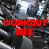 Workout Mix von Various Artists