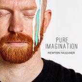 Pure Imagination von Newton Faulkner