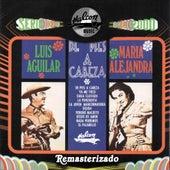 De Pies a Cabeza (Remasterizado) de Various Artists