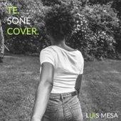 Te Soñe de Luis Mesa