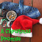 A Christmas Promise von Magnificence