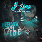 Feeling the Vibe by J Love