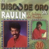 El Disco de Oro de Raulin, 1 de Raulin