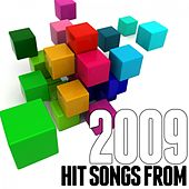 Hits Songs from 2009 by Various Artists