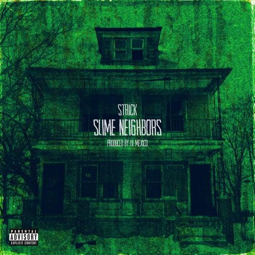 Slime Neighbors de Strick