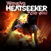 Heatseeker by Thermb2fly